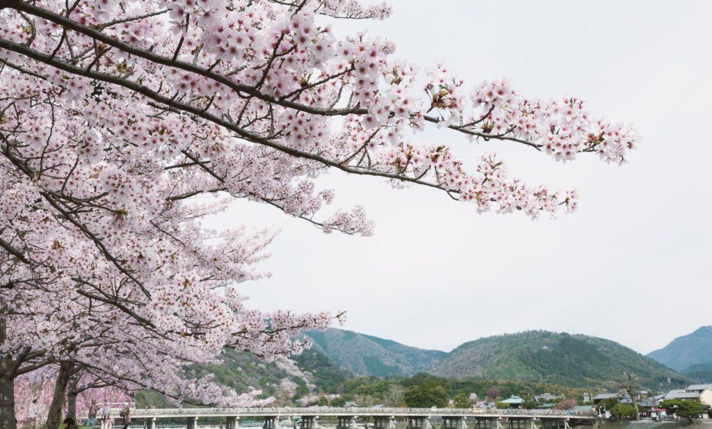 京都室内遊び場嵐山オルゴール