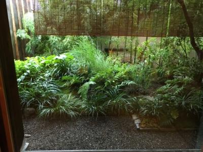京都俵屋旅館の庭