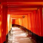 京都のインスタ映え伏見稲荷観光