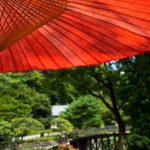 歩かないでOKな京都観光
