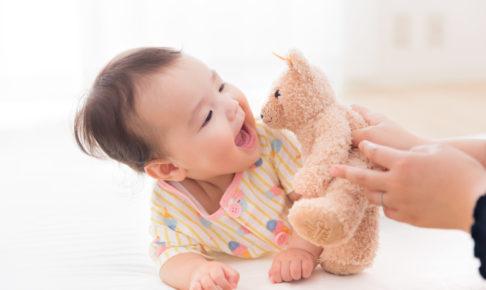 赤ちゃん研究員の募集から実施ま
