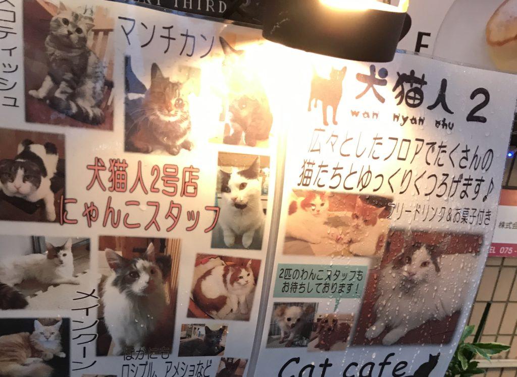 犬猫人京都